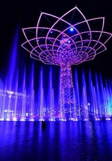 albero_della_vita_EXPO